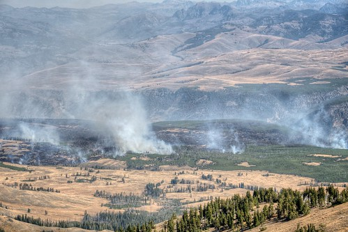 Forest Fires in the Lamar Valley