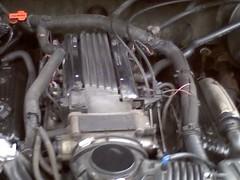 The L99 Project 5486070254_435e40dd37_m