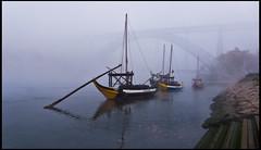 Barcas y puente Luis I en la niebla (guillenperez) Tags: bridge portugal water nova rio fog river de puente boat vineyard agua barca wine foggy vila porto douro luis gaia niebla oporto luiz vino duero viedo