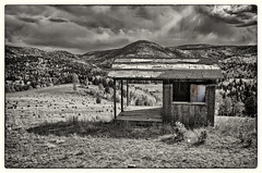 Refrigerated Shack (Fort Photo) Tags: blackandwhite bw mountains abandoned nature architecture rural forest landscape nikon colorado decay stormy co nik rockymountains shack aspen oddity teller goldcamproad nikon1735 d700 silverefex2