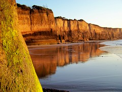 Point Addis Marine National Park,  Anglesea cliffs at low tide pic 1 (Skeggsy) Tags: sunrise dawn australia victoria sandstonecliffs grinders anglesea limestonecliffs greatotwaynationalpark coastalseascape pointaddismarinenationalpark angleseacliffs surfcoastcliffs cliffreflections