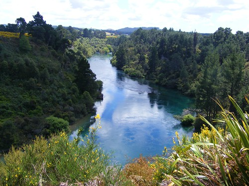 Picture from the Huka Falls Walkway