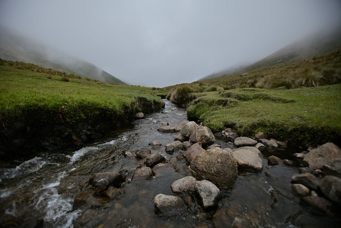 The stream will soon be covered in clouds.