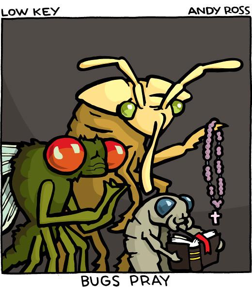 Bugs Pray