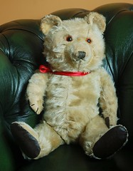 Chiltern 1950's Ting-a-ling bear 16 inches 1 (Davids Unusual Destinations) Tags: bear english teddy chiltern tingaling