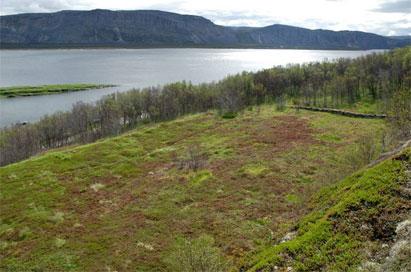 Arkeologiske undersøkelser i Finnmark II