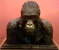Carl Akeley's old Man of Mikeno, 1923 (JFGryphon) Tags: carlakeley americanmuseumofnaturalhistorynewyork