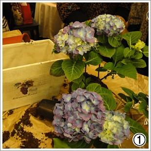 花團錦簇繡生活 (2)