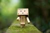 緑 (23fumi) Tags: ilce7m2 sony 58mm cosina nokton voigtlander voigtländernokton58mmf14slⅱ danbo figure toy green moss bokeh dof ノクトン a7ⅱ α7ⅱ ダンボー コシナ