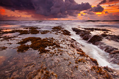 Pererenan beach (Helminadia Ranford(Traveling)) Tags: bali seascape beach indonesia newvision pererenan peregrino27newvision