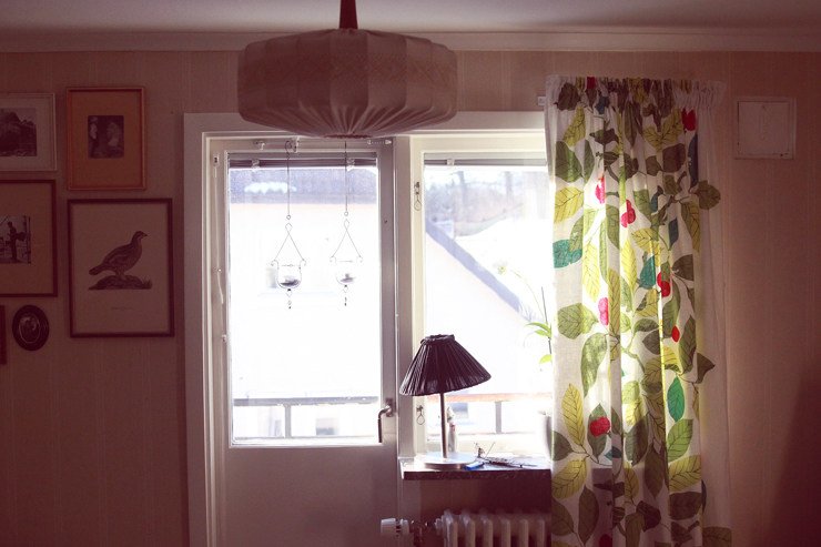 livingroom window