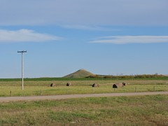 Blackstrap Mountain