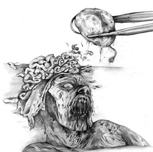 Zombie Dissection: Brains