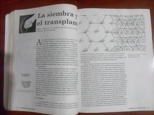 Cultivo biointensivo de alimentos
