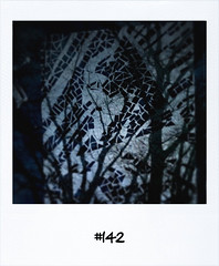 "#DailyPolaroid #142 • <a style=""font-size:0.8em;"" href=""http://www.flickr.com/photos/47939785@N05/5422228922/"" target=""_blank"">View on Flickr</a>"
