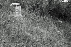 Ferrin - damaged monument (Geographer Dave) Tags: ferrin masonic pioneer cemetery lafayette yamill county oregon blackwhite bw black white blackandwhite