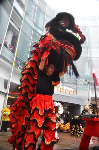 Lion Dancer Full Body