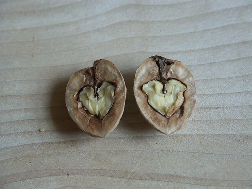 Walnut Valentine