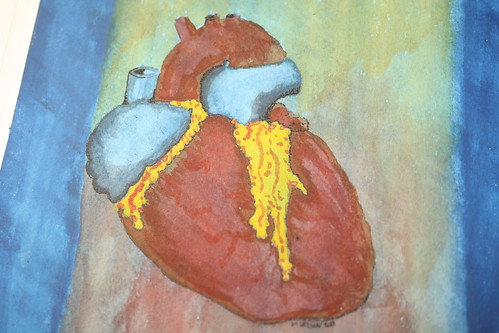 Heart (close-up)