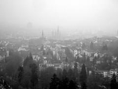 wiesbaden (marfis75) Tags: city mist fog germany deutschland blackwhite flickr wiesbaden day cityscape fuji nebel hessen view cc f30 stadt sw landschaft wald neroberg stdtisch landeshauptstadt marfis75 19februar marfis75onflickr