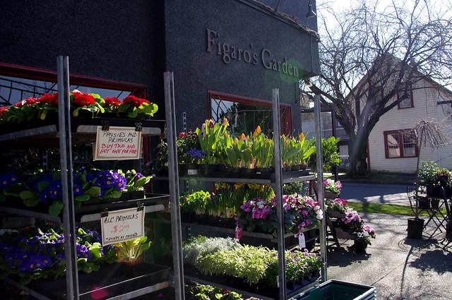 Figaro's Garden