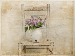 Soon (raewillow) Tags: white texture vintage chair you thank coming soon lilacs  kimklassen 30textures30days