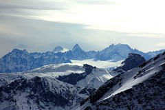 Trient. (Elysium 2010) Tags: winter snow mountains montblanc skimountaineering chardonnet aiguilleverte glacierdutrient concordians aiguilledargentires surtruex