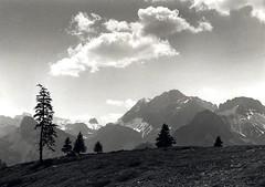 Near Kandersteg (Guido Havelaar) Tags: blackandwhite bw monochrome schweiz switzerland blackwhite suisse suiza monotone kandersteg svizzera schwarzweiss pretoebranco noirblanc  neroeblanco suica
