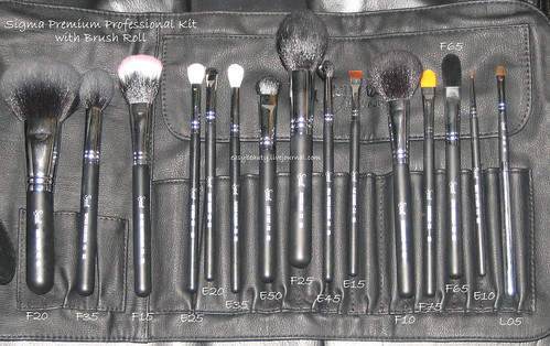 Sigma Premium Professional Kit with Brush Roll