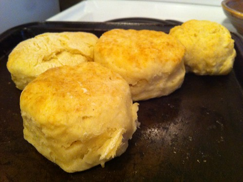 Vegan Chicks Rock The Best Biscuits In The World