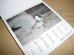 Roman cats calendar from Helja