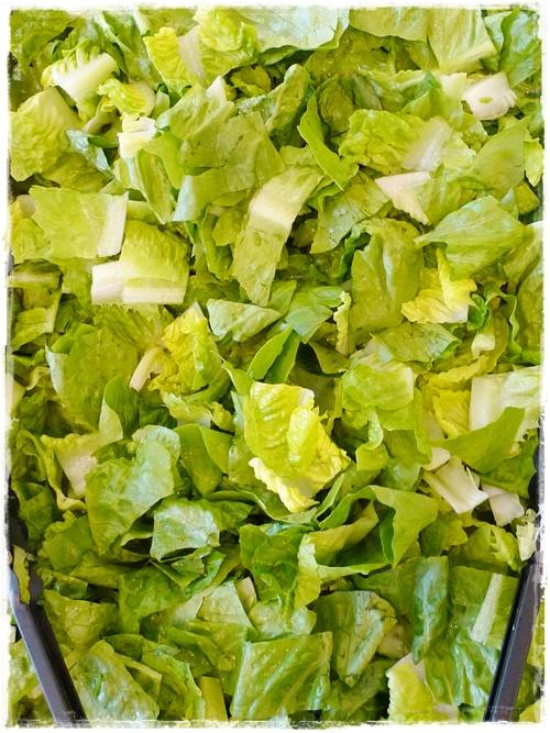 Abundance of Crunchy Lettuce