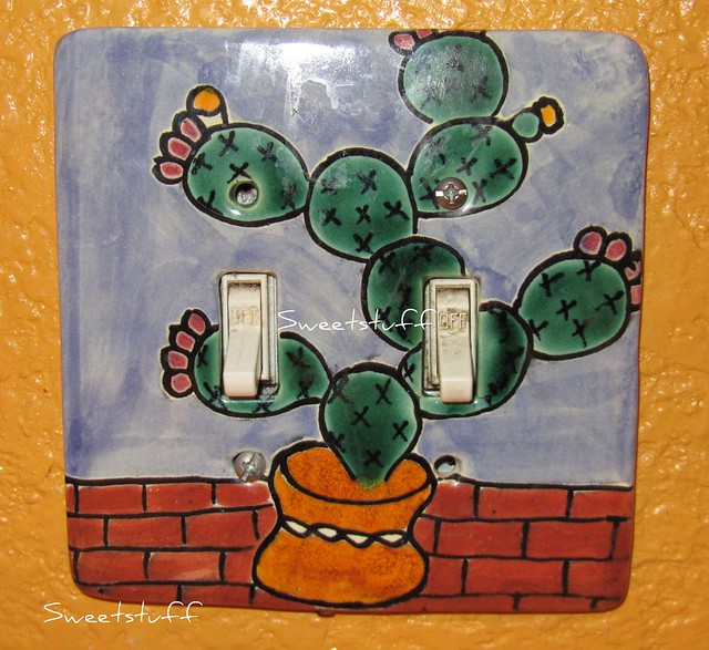 My cactus light switch