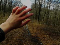 I'm dying. (Liz Homola) Tags: trees skull hand walk brush nails wrist bushes sleve skywoods