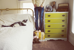 Bench Monday, blurry bedroom edition. (Sarah Jane (LovelyEmberPhotography)) Tags: home bedroom pica 365 ohwell hbm benchmonday shesmylittleshadow shejumpeduponthebedassoonasiwentintheroom nowshesbackbythecomputer ipaintedthatdresser itsthesamecolorasourisland didntgetmyhandsinthepocketsintime