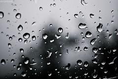 l fora (evaniavb) Tags: agua chuva janela pingo evaniavb