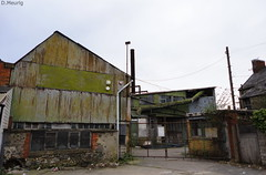 Gibbon & Sons Ltd Timber Yard (norman preis) Tags: yard timber cardiff explore caerdydd richmondroad derelict development cathays urbex 2011 crwys deathjunction dissused dmeurig gibbonsons