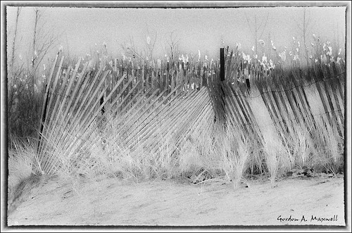 Snow Fence 1  -  Explore #483 - March 10, 2011