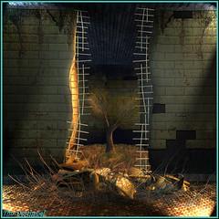 La liberté n'est jamais très loin ... (Tim Deschanel) Tags: life mars tree landscape tim sl liberté second designs paysage arbre deschanel deelishous