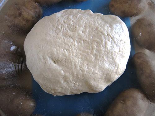 Potato dough resting, take two