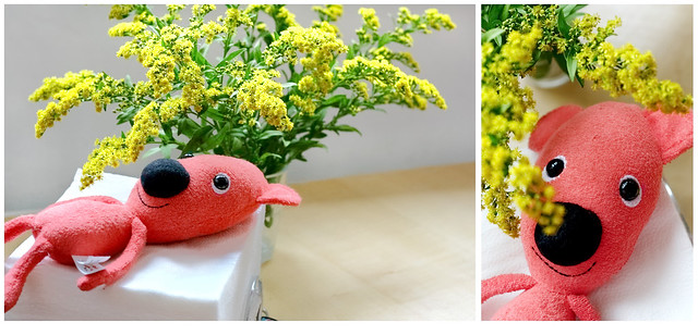 Kuky_flower