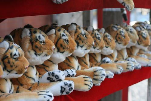 Tigers!