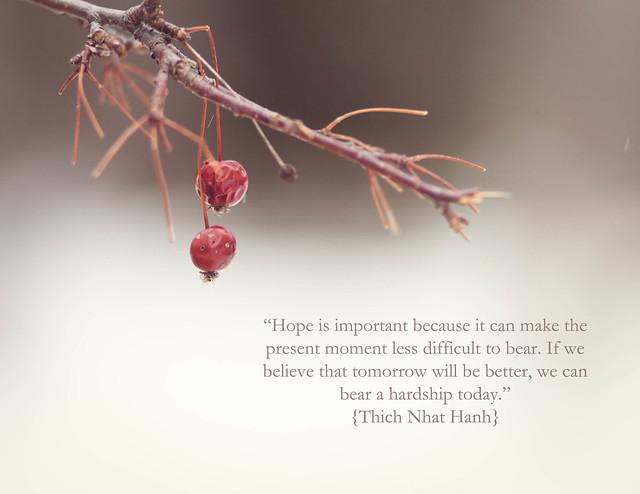 365: 110 Hope