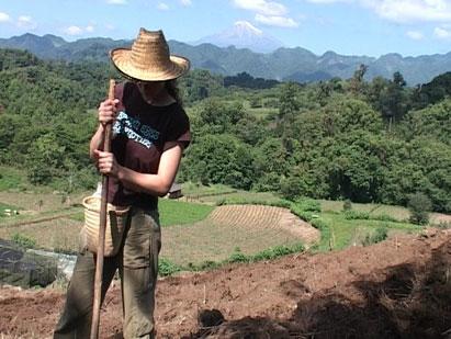 Fieldwork in Mexico I