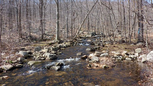 Bear Swamp Brook