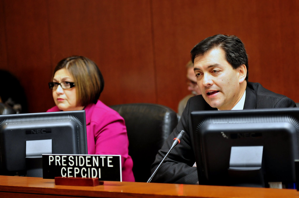 Permanent Council and CEPCIDI Hold Joint Session to Launch Inter-American Year of Culture