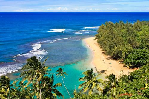 Aloha Tube Hd