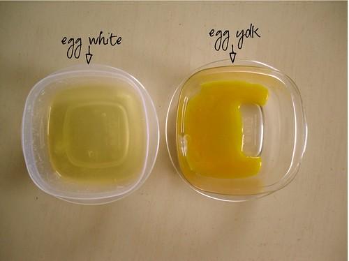 eggwhiteyolk
