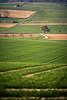 depth of field (Dennis_F) Tags: trees tree green nature colors field lines zeiss landscape 3d spring dof sony natur tracks felder spuren traces shallow grün fullframe dslr baden landschaft za depth baum farben frühling 135mm fokus weingarten tiefe kraichgau 13518 a850 sonyalpha sonydslr vollformat jöhlingen cz135 zeiss135 dslra850 sonya850 sonyalpha850 alpha850 sonnart18135 sony135 sonycz135 gettygermanyq2