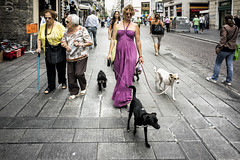 the lady of the dogs (michele liberti) Tags: streetphotography streetcolors street urban city women dog urbanscene napoli italy naples